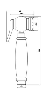 Лейка для биде Bennberg круг IWH-013 Бронза