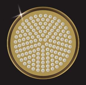 Лейка душевая Elghansa CD-220-Gold, золото
